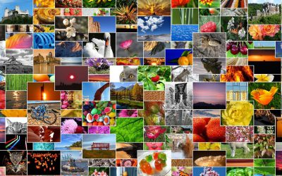 You Can Now Search for Nearly Anything in Your Photos Library