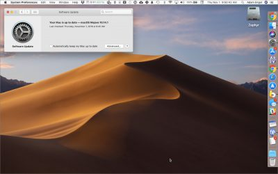 To Update macOS 10.14 Mojave, Use This New System Preferences Pane
